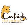 Café Chat l'heureux - cat café Montréal thumb