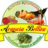 Aranciabellino.it