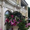 Zenith Holland Gardens