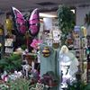Wild Iris Flowers & Gifts