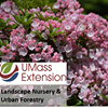 UMass Extension Landscape Nursery and Urban Forestry