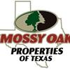 Mossy Oak Properties of Texas- Graham Division