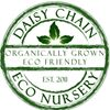 Daisy Chain Eco Nursery