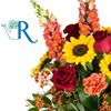 Radebaugh Florist