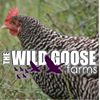 The Wild Goose Farms