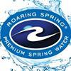 Roaring Spring Water