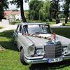 Hochzeitsauto-/Oldtimerverleih München Erding Freising