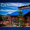 Enchanted Forest Accommodations