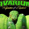The Vivarium Reptiles and Exotics