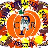 Chincoteague Pony Rescue