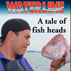 Waterline Magazine