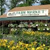 Matts Farm Market & Garden Center