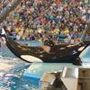 San Antonio Sea World