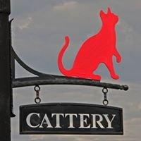 Mount Villa Cattery Salhouse