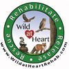 Wild At Heart Wildlife Rehabilitation