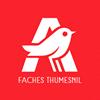 Auchan Faches Thumesnil