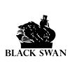 Black Swan Fireside Hearth & Home