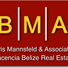 Boris Mannsfeld & Associates
