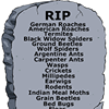 Graves Termite and Pest Solutions
