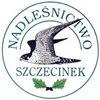 Nadleśnictwo Szczecinek, Lasy Państwowe