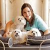 Katherine Elizabeth Pet Products