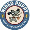 Wired Puppy Boston