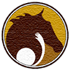 My Heroes, llc. Hippotherapy