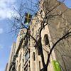 Svenska kyrkan i New York thumb