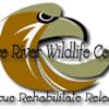 PRWC Wildlife Rehabilitation and Sanctuary