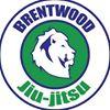 Profectus Jiu Jitsu Brentwood