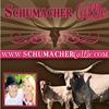 Schumacher Cattle, LLC (Texas Longhorns)