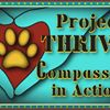 Project: THRIVE