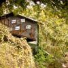 Rio Cibolo Ranch
