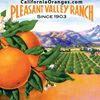 California Oranges Pleasant Valley Ranch