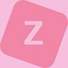 Vizir Software Studio