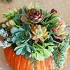 A Wedding & Event Flower Company
