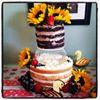 Tasty Cakes by Laura Olivia