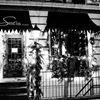Sofia wine bar, cafe