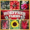 Hoeffner Farms