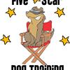 5 Star Dog Training