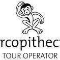 Cercopithecus tour operator