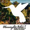 Hummingbird Cabins