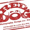 Red Dog Photography