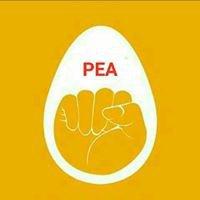 Punjab Eggs Association - PEA