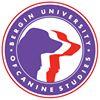 Bergin College of Canine Studies