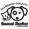 Allegany County Animal Shelter