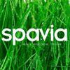 Spavia Day Spa - Lincoln Park