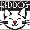 Red Dog Coffee in Manitou Springs