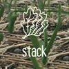 Stack Farm & Food Co.