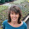 Dwyer Greens & Flowers, Inc